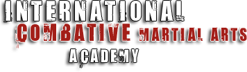 International Combative Martial Arts Academy